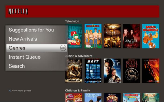 A photo of an old Netflix interface.